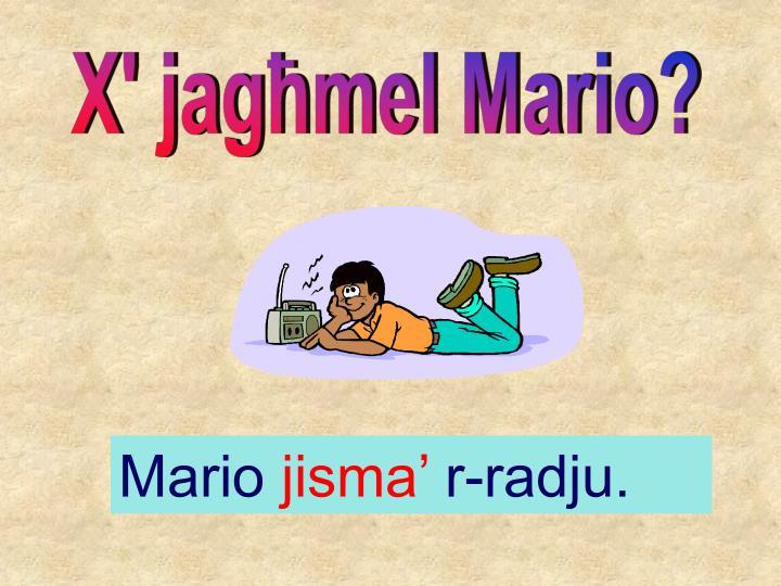 X' jag]mel Mario?
