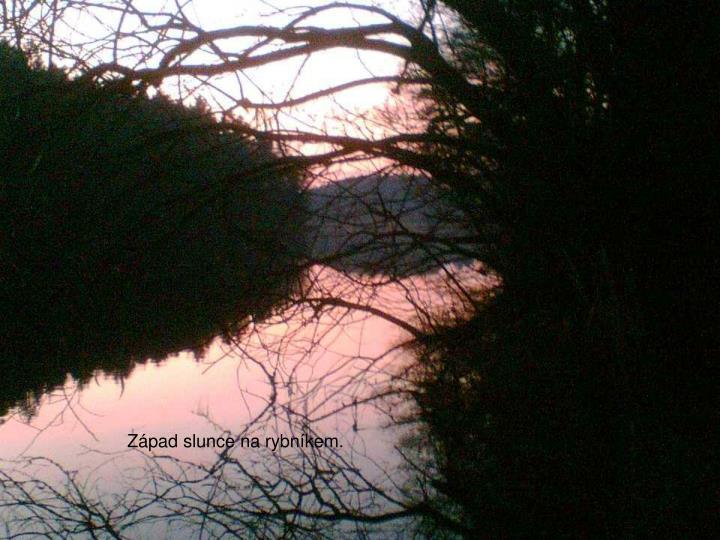 Západ slunce na rybníkem.
