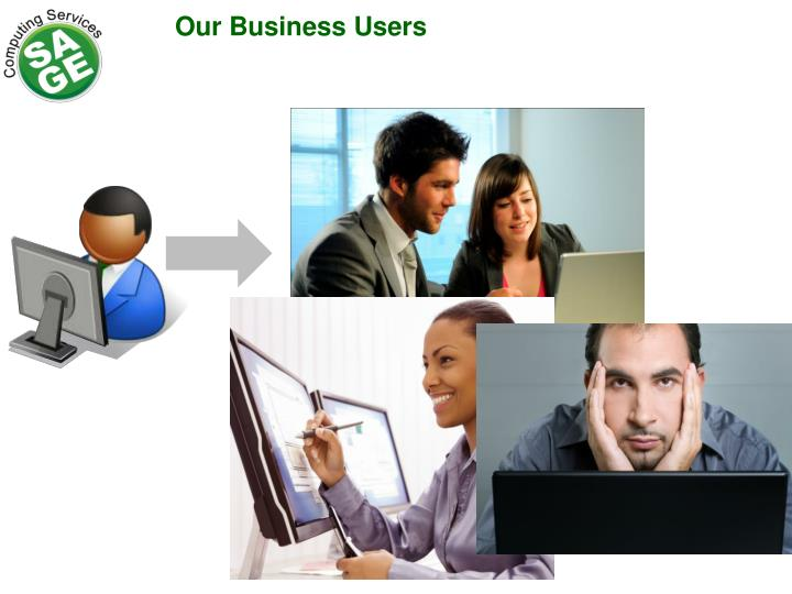 Our Business Users