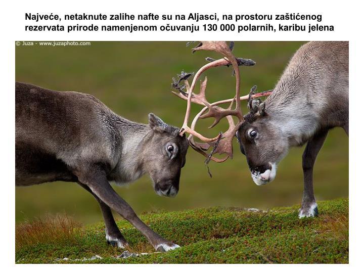 Najveće, netaknute zalihe nafte su na Aljasci, na prostoru zaštićenog rezervata prirode namenjenom očuvanju 130 000 polarnih, karibu jelena