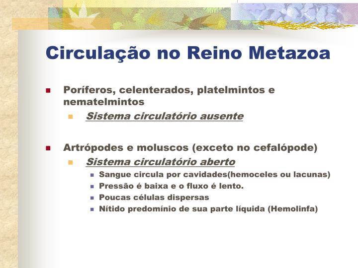 Circulação no Reino Metazoa