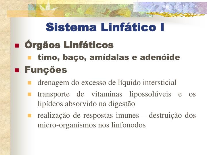 Sistema Linfático I