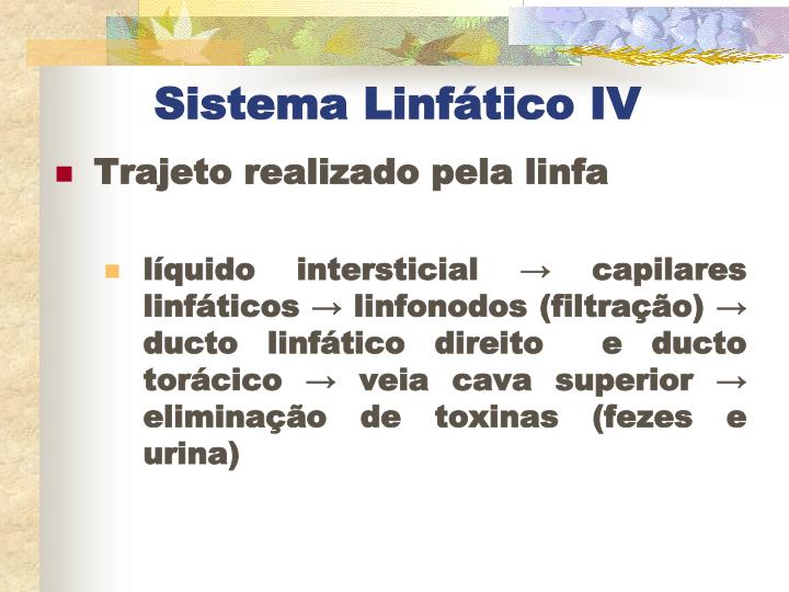 Sistema Linfático IV