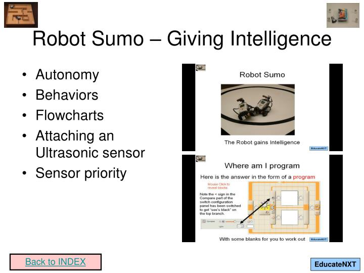 Robot Sumo – Giving Intelligence