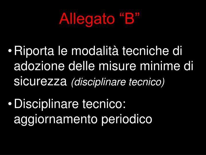 """Allegato """"B"""""""