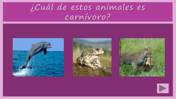 ¿Cuál de estos animales es carnívoro?