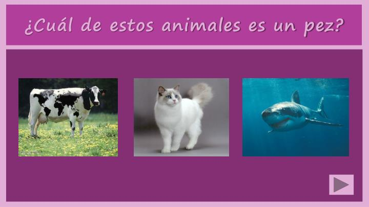 ¿Cuál de estos animales es un pez?