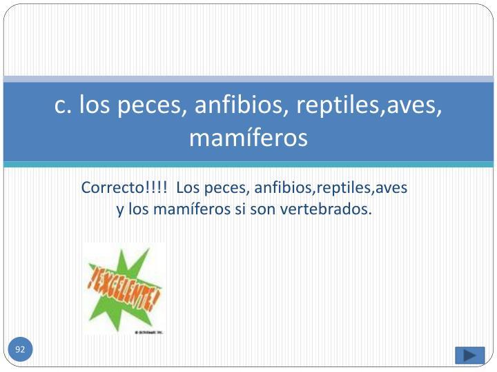 c. los peces, anfibios, reptiles,aves, mamíferos