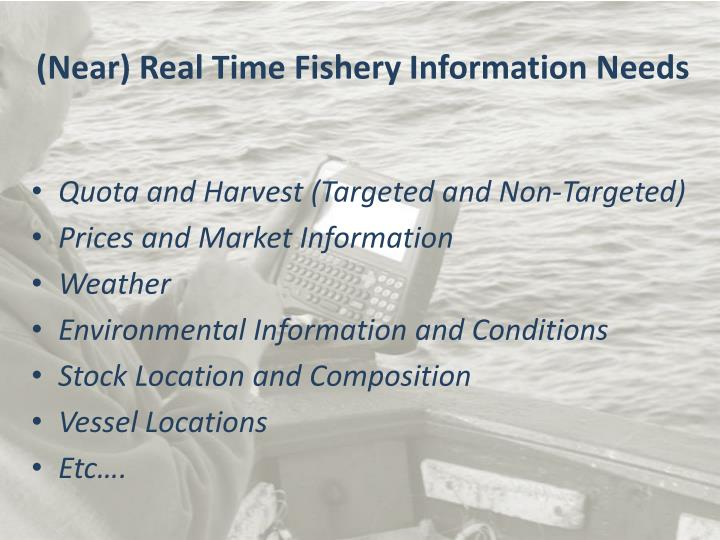 (Near) Real Time Fishery Information Needs