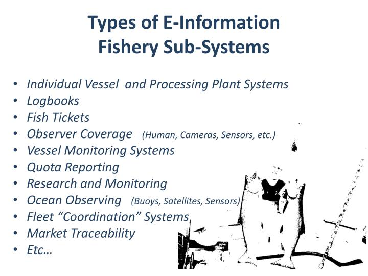 Types of E-Information