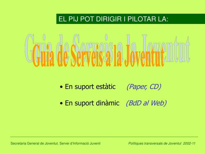 EL PIJ POT DIRIGIR I PILOTAR LA: