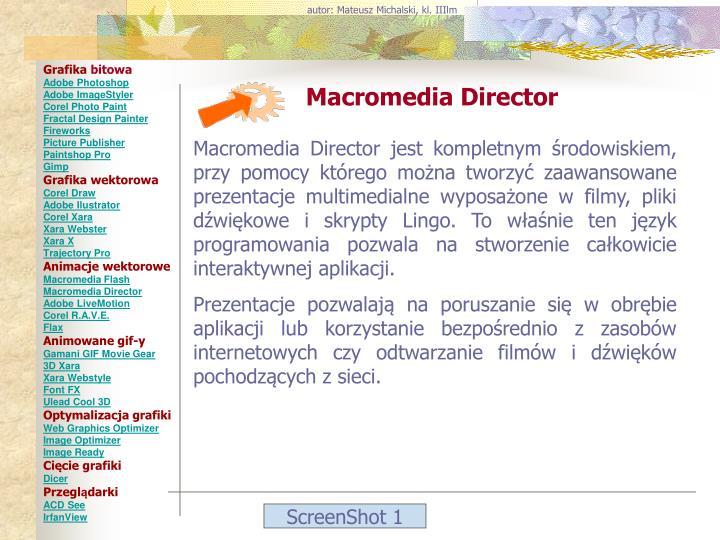 autor: Mateusz Michalski, kl. IIIlm