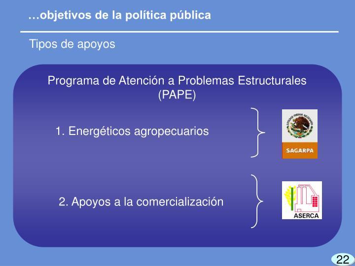 Programa de Atención a Problemas Estructurales (PAPE)