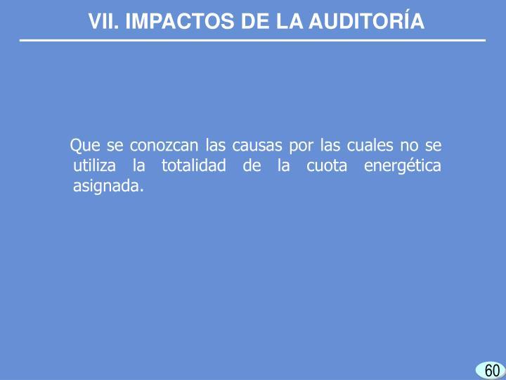 VII. IMPACTOS DE LA AUDITORÍA