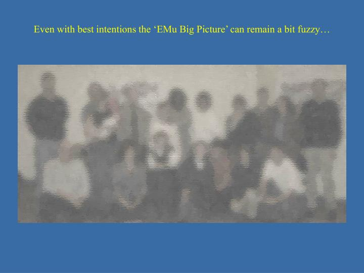 Even with best intentions the 'EMu Big Picture' can remain a bit fuzzy…