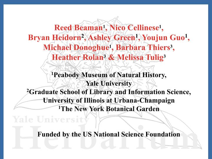 Reed Beaman