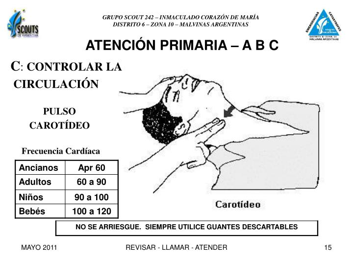 GRUPO SCOUT 242 – INMACULADO CORAZÓN DE MARÍA