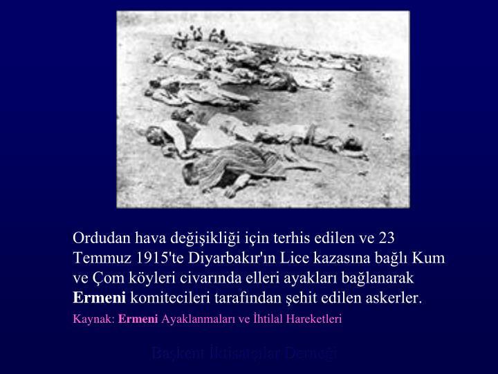 Ordudan hava değişikliği için terhis edilen ve 23 Temmuz 1915'te Diyarbakır'ın Lice kazasına bağlı Kum ve Çom köyleri civarında elleri ayakları bağlanarak