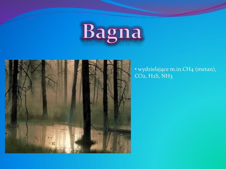 Bagna