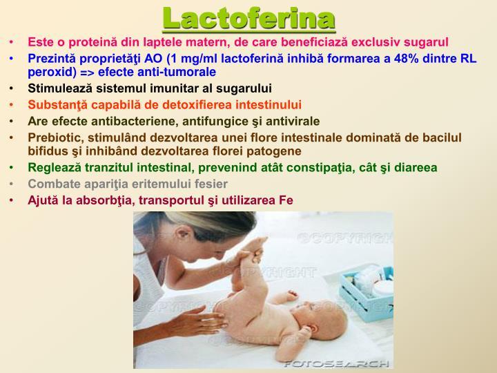 Lactoferina