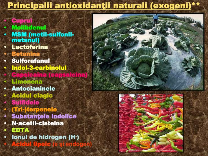 Principalii antioxidanţii naturali (exogeni)