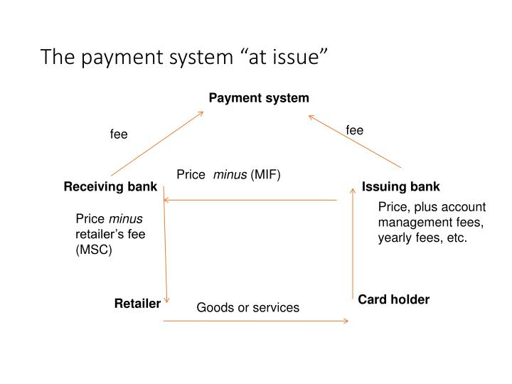 """The payment system """"at issue"""""""