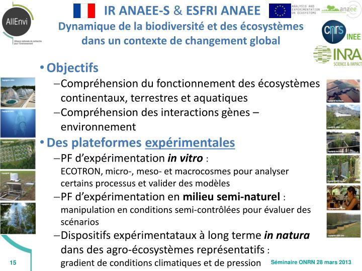 IR ANAEE-S