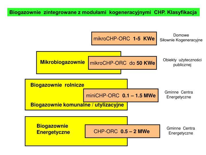 Biogazownie  zintegrowane z modułami  kogeneracyjnymi  CHP. Klasyfikacja