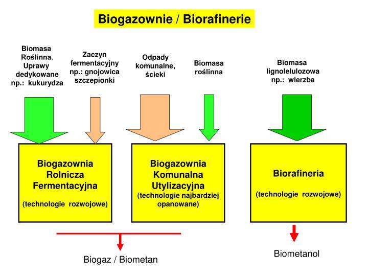 Biogazownie / Biorafinerie