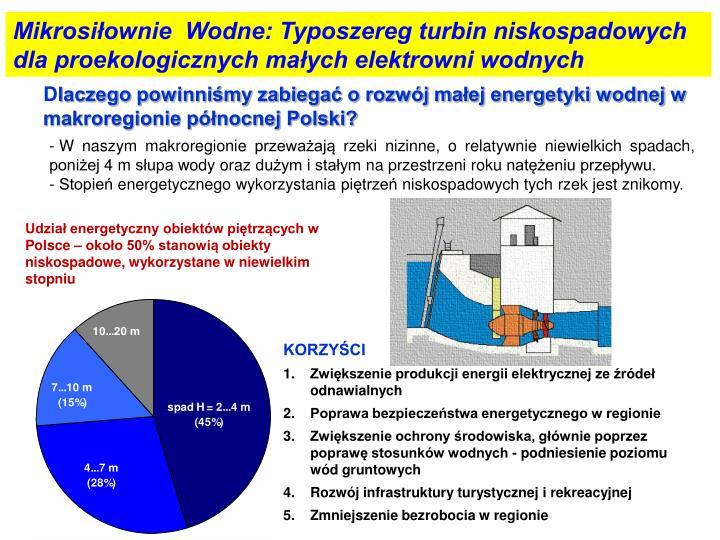 Mikrosiłownie  Wodne: Typoszereg turbin niskospadowych dla proekologicznych małych elektrowni wodnych