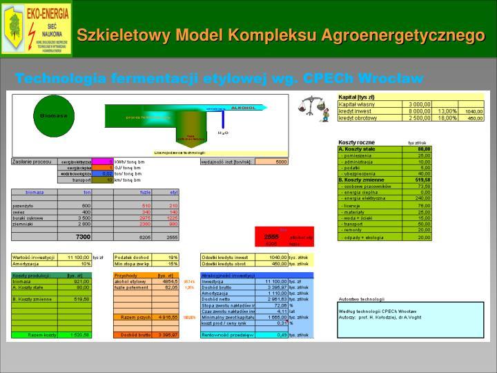 Szkieletowy Model Kompleksu Agroenergetycznego