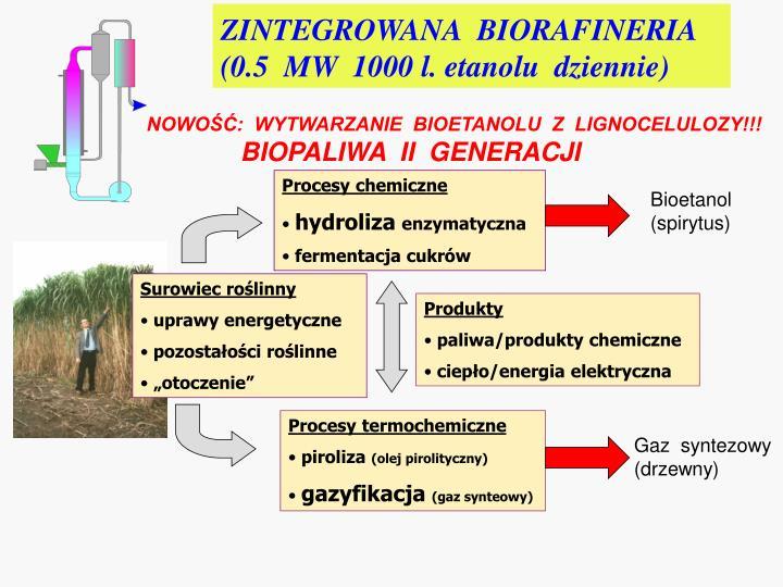 ZINTEGROWANA  BIORAFINERIA