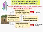 zintegrowana biorafineria 0 5 mw 1000 l etanolu dziennie