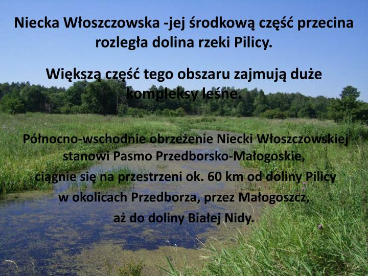 Niecka Włoszczowska