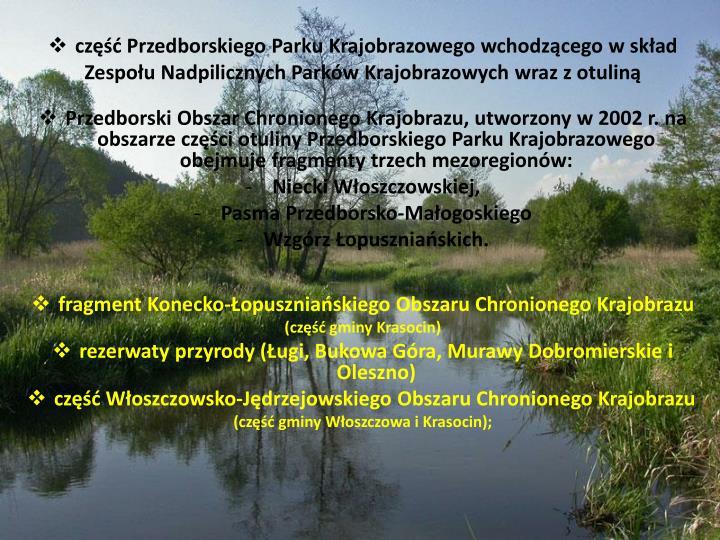 część Przedborskiego Parku Krajobrazowego wchodzącego w skład