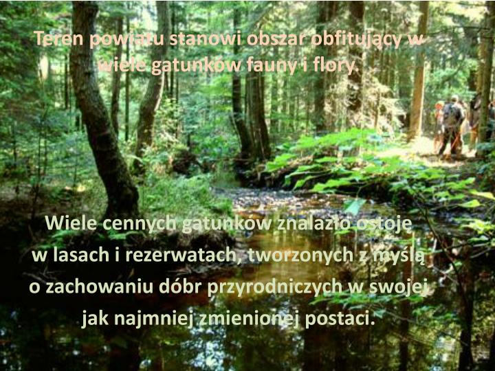 Teren powiatu stanowi obszar obfitujący w wiele gatunków fauny i flory.