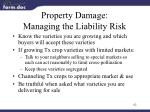 property damage managing the liability risk