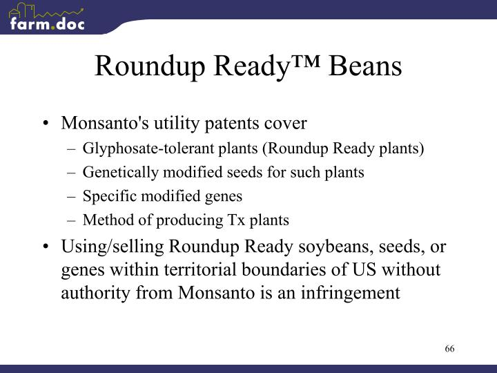 Roundup Ready™ Beans