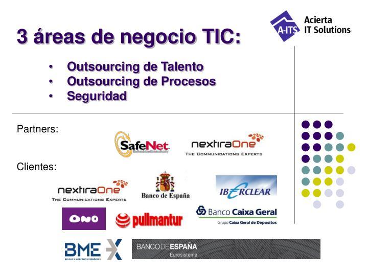 3 áreas de negocio TIC: