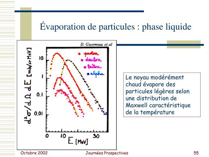 Évaporation de particules : phase liquide