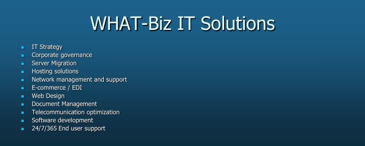 WHAT-Biz IT Solutions