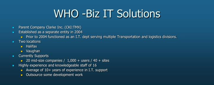 Who biz it solutions
