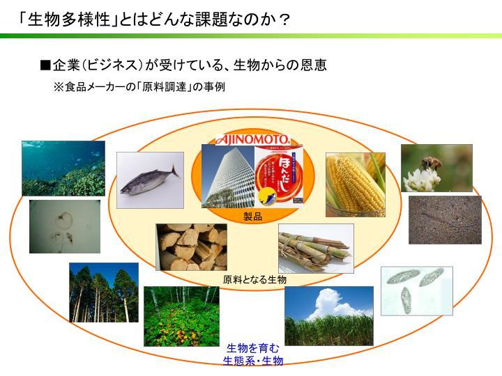 「生物多様性」とはどんな課題なのか?