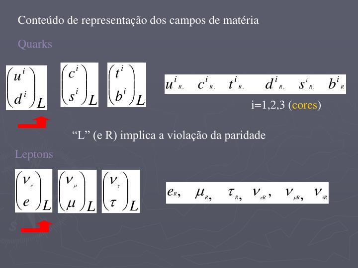 Conteúdo de representação dos campos de matéria