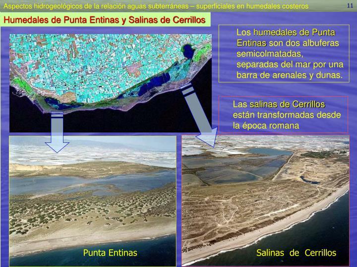 Humedales de Punta Entinas y Salinas de Cerrillos