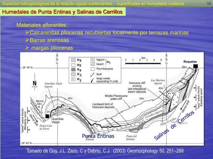Salinas  de  Cerrillos