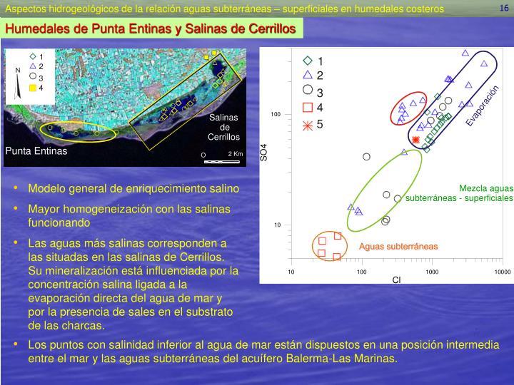 Modelo general de enriquecimiento salino