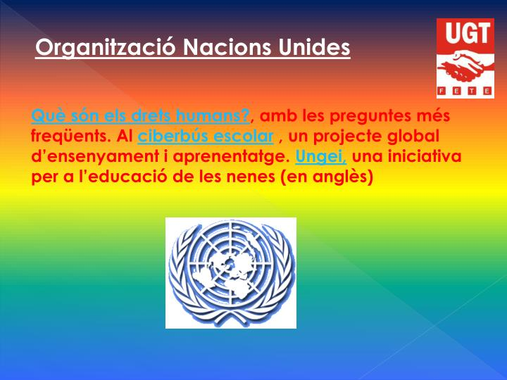Organització Nacions Unides