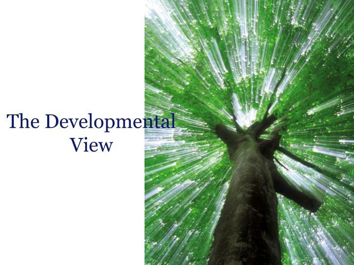 The Developmental View