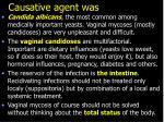 causative agent was1